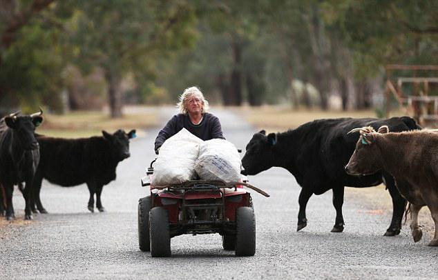 澳小镇因采矿业变为废墟 66岁斗士与矿业巨头对峙