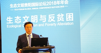 高培勇在生态文明与反贫困高峰会上做现场演讲。