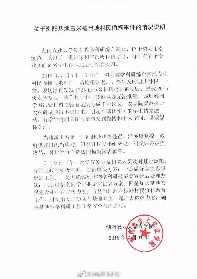 湖南农大价值千万科研玉米被偷 校方:调整论文方案
