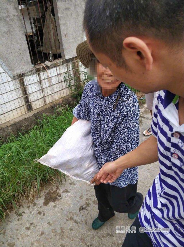 湖南农大科研玉米被偷 校方:当地已组织归还 同学论文方案调整