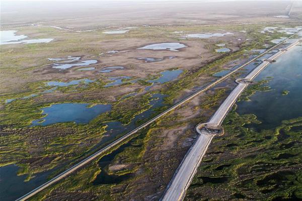 """出疆高速路横穿沙漠""""绿色走廊""""致力环保先行"""