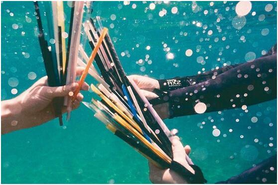 澳大利亚悉尼号召学生与志愿者记录海洋中的部分塑料垃圾