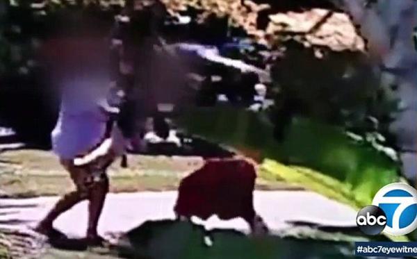 美国一男子用儿子当武器当街攻击女友被拘捕
