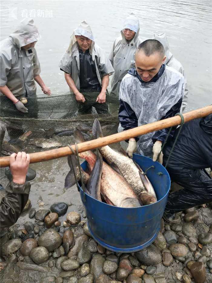 暴雨天大家都在躲雨 这所大学竟忙着在湖中捞鱼