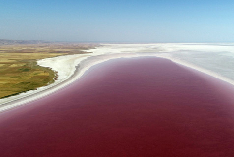 """土耳其盐湖盐藻生长 湖水似""""红酒"""""""