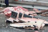 冰岛捕鲸人捕杀稀有蓝鲸 肢解后将销往日本