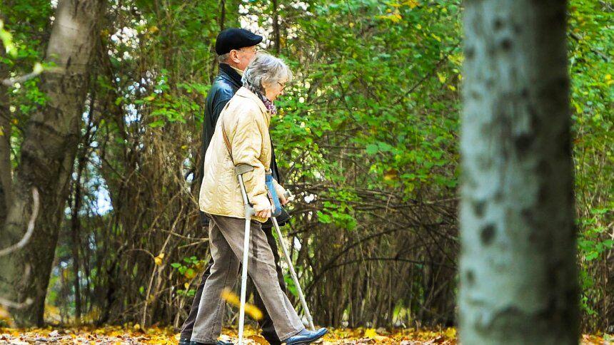 德国面临老年贫困问题 半数退休金额低于800欧