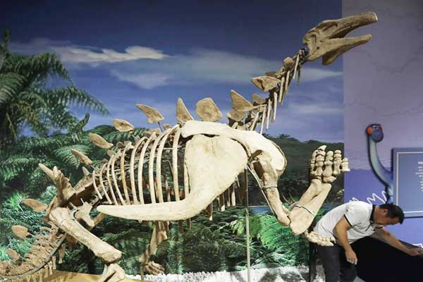 """""""侏罗纪世界""""亮相南京博物院"""