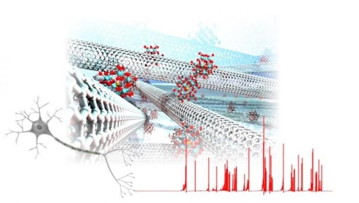 科学家成功借助纳米材料复制部分大脑功能