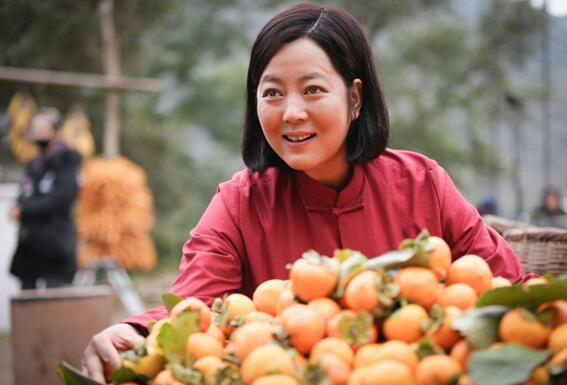 《岁岁年年柿柿红》王茜华演绎传奇女子 领跑全国收视