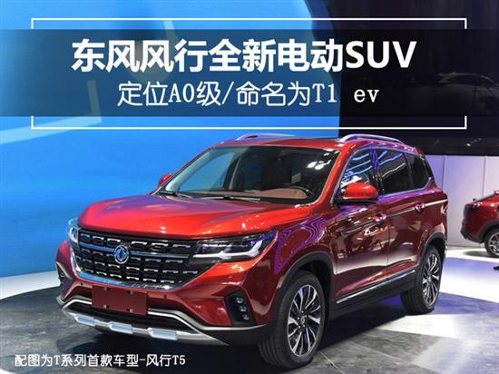 东风风行全新电动SUV 定位A0级/命名为T1 ev