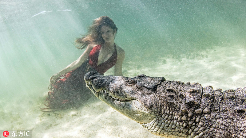 女模特和獠牙巨鳄水下同游 惊险唯美