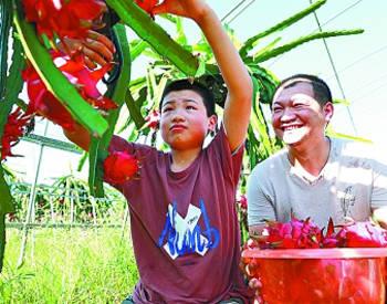 休闲农业助力乡村振兴