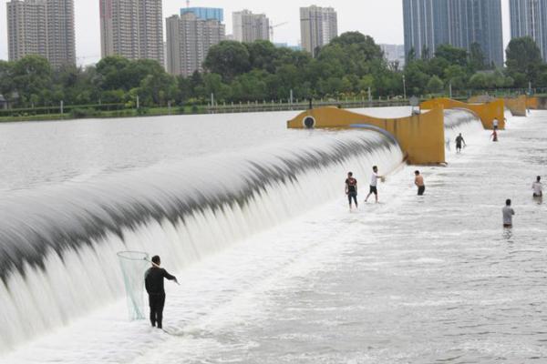 太原汾河堤坝上演捕鱼大战 市民自制工具涉险捕鱼
