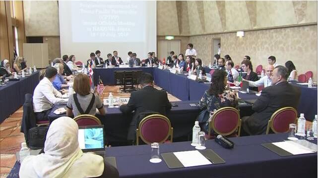 TPP成员举行首席谈判代表会议 日本敦促各国早日完成国内手续