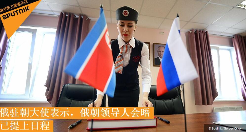 俄驻朝大使:俄朝领导人会晤已提上日程