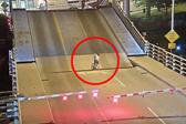 惊险!美女子骑车不顾路障警示掉入大桥缝隙