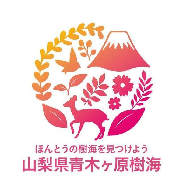 """替""""自杀森林""""正名 日本山梨县为""""青木原树海""""制作宣传海报"""