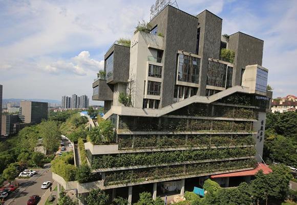 """重庆建筑穿上""""植被"""" 犹如水泥森林中的空中花园"""