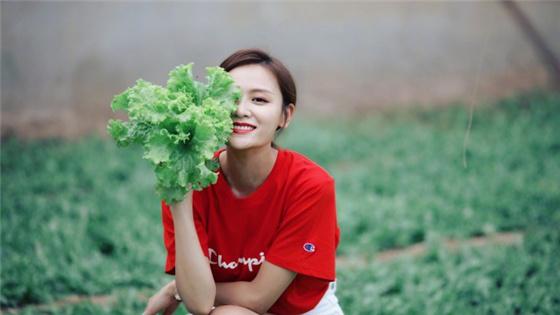 叶一茜采摘蔬菜活力满满