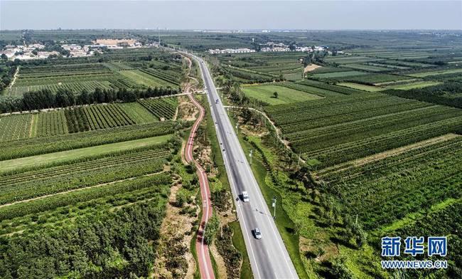 陕西合阳:生态屏障建设见效(图)
