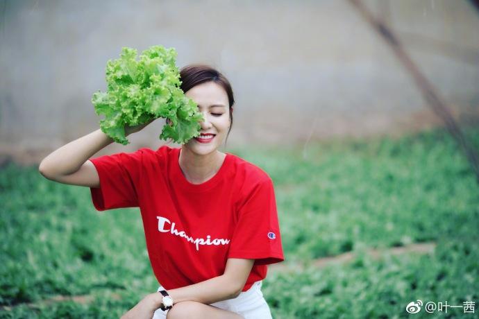叶一茜采摘蔬菜活力满满  大秀长腿红衣红唇气色佳