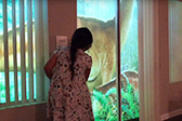 """美父亲后院投影为女儿重现""""侏罗纪世界"""""""
