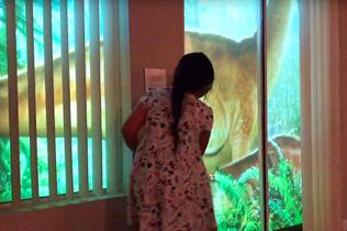 """美父亲后院投影为女儿重现""""侏罗纪世界""""爱意满满"""