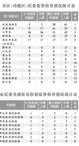"""武汉:283人因""""双评议""""数据录入不实被问责"""