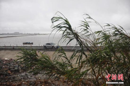 江苏部分地区农作物倒伏电力设施受损 启东雨最大