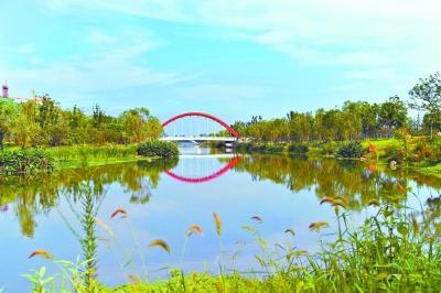 武汉实施十大园林绿化景观提升工程 定期检查考核