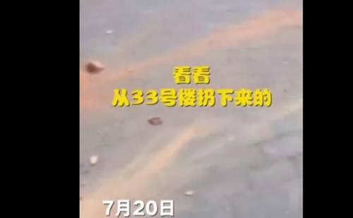 熊孩子32楼扔砖头 家长:又没砸到人,吓着孩子了