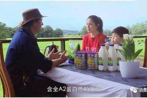 A2奶粉违反广告法被罚十万 导火索是胡可安吉…