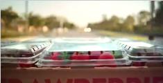 创意公益广告《草莓的一生》
