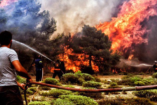 希腊山林大火遇难人数升至74人 车辆房屋被烧成灰烬