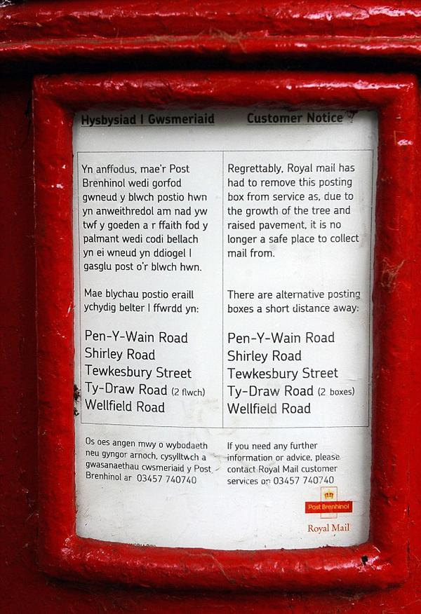 英国一只百年邮筒因被树干裹住被迫退休