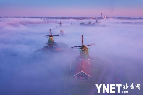 摄影师捕捉雾中荷兰 晨光微熹仿佛仙境