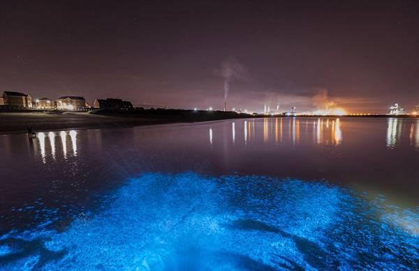 自然奇观!英海滩高温天气惊现奇异蓝光