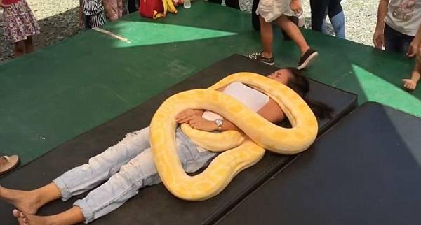 惊呆!菲律宾动物园推出蟒蛇按摩给游客放松