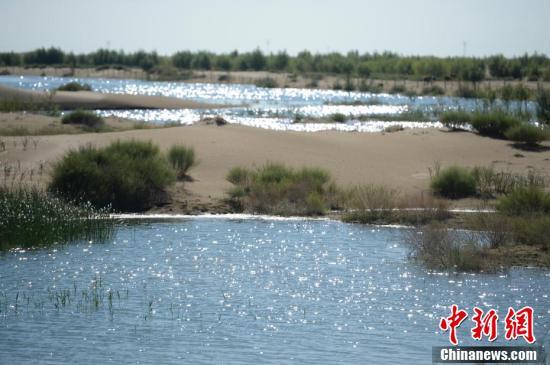"""中国第七大沙漠治理:引黄河凌水""""沙漠变绿洲"""""""