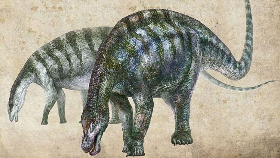 """中国发现""""神奇灵武龙""""化石 可能改写恐龙谱系"""