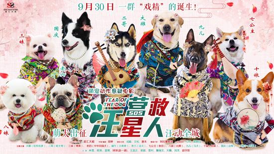 萌宠电影,《营救汪星人》汇集了30多个狗狗品种,包括拉布拉多,大头法