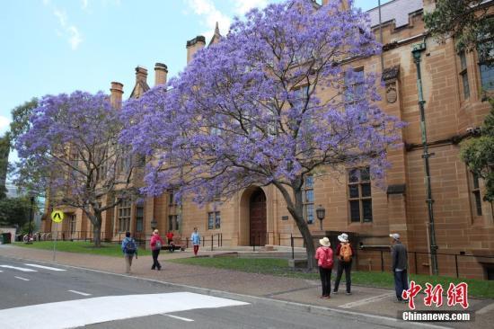 限流还是扩招? 澳洲大学招国际留学生现分歧