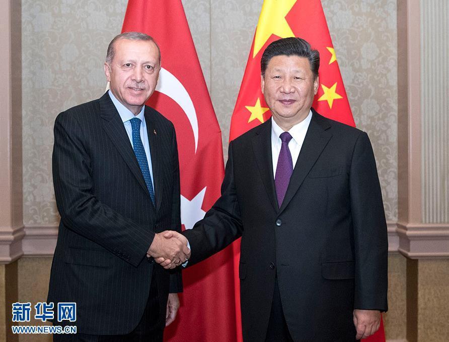 习近平会见土耳其总统
