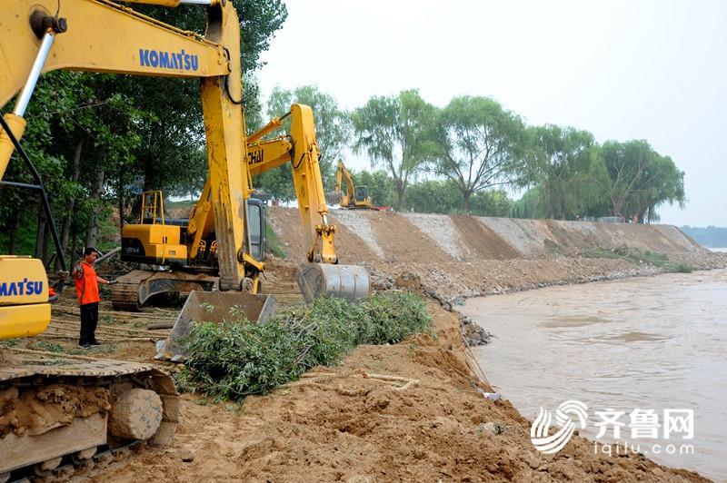 黄河惠民段出现坦石和滩岸坍塌险情 目前得到有效控制