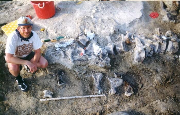 迄今最大恐龙脚印化石被发现 宽约1米