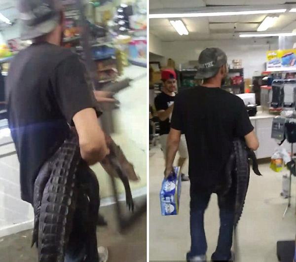 美国一男子抱鳄鱼进便利店吓顾客引发爆笑