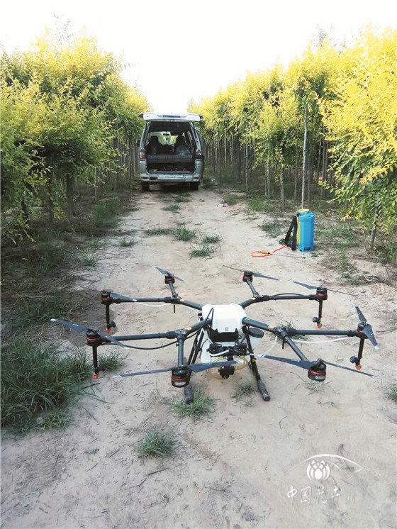 你的苗圃该不该用植保无人机?