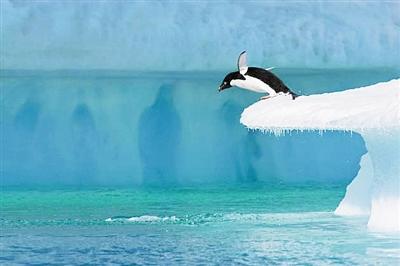 全球仅13%海洋 未遭人类破坏