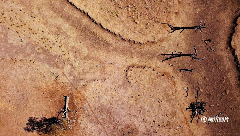 航拍澳大利亚东部大旱 农场犹如沙漠